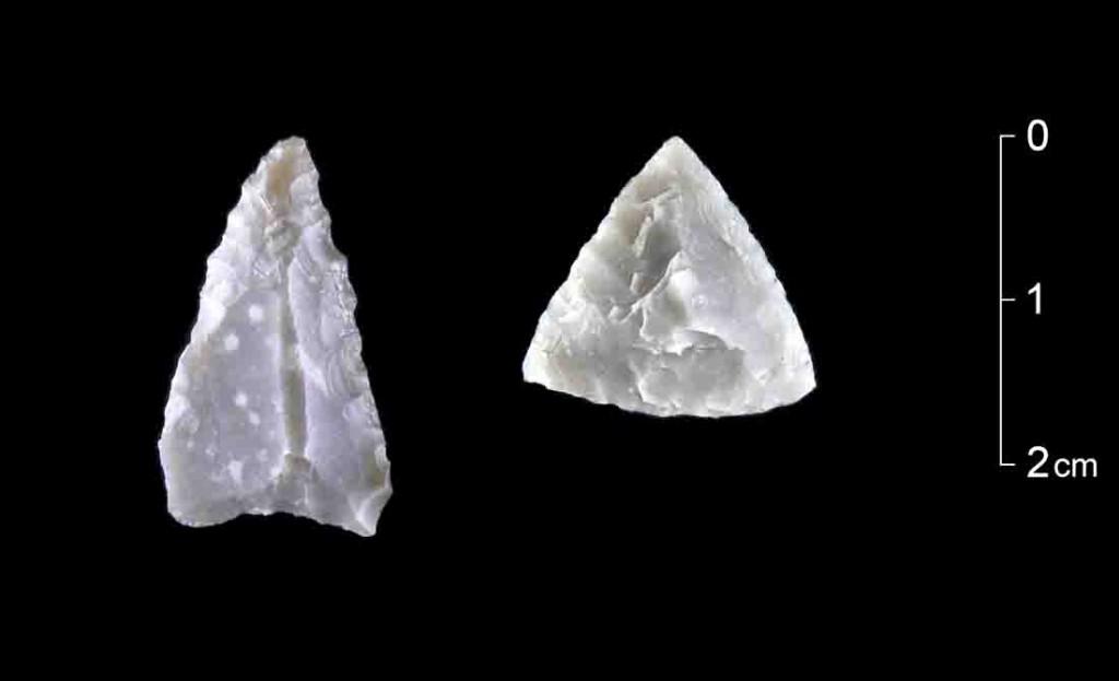 Zwei Pfeilspitzen, die typisch für die mittlere Phase der Jungsteinzeit vor etwa 6500 Jahren sind. Der Feuerstein für das linke Stück stammt aus Belgien. Möglicherweise sind diese Stücke Hinweise auf die Jagd, die diese eigentlich am Hellweg Ackerbau und Viehzucht treibenden Bauern erstmals in das Siegerland führten. Foto: LWL/H. Menne