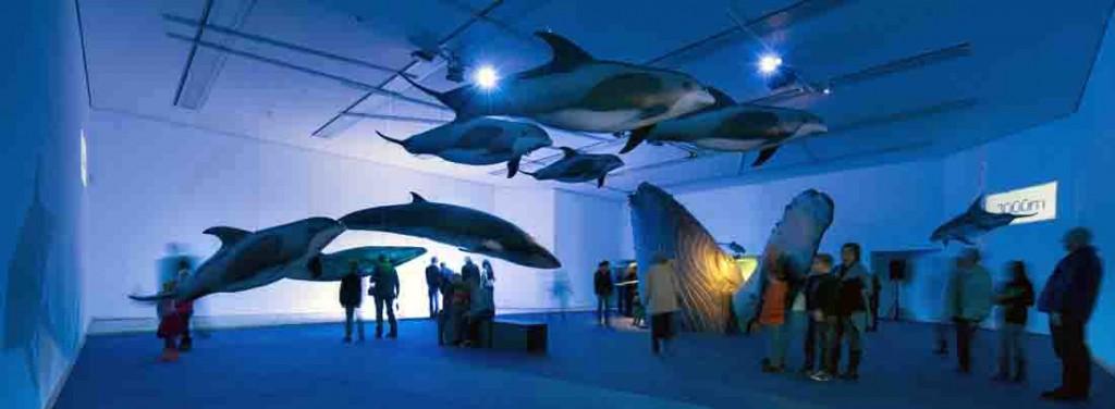 Einzigartige Nachbildungen von lebensgroßen Walen beeindrucken die Besucher. Foto: LWL/Oblonczyk.