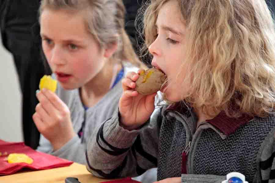 Am besten schmeckt die Kartoffel von der Hand direkt in den Mund. Foto: LWL/Holtappels