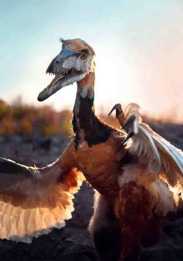 Die Dinosaurier sind zurück im LWL-Museum für Naturkunde und diesmal bringen sie die gefiederten Dinos mit. Foto: LWL/Oblonczyk