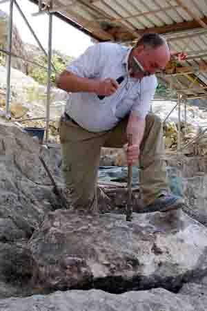 Dr. Klaus Peter Lanser ist Dinosaurier-Experte am LWL-Museum für Naturkunde. Er hat zahlreiche Fossilien, die in der Ausstellung zu sehen sind, selbst ausgegraben. Foto: LWL/Oblonczyk