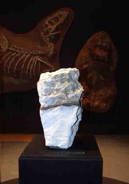 Das Ende der Dinosaurier hat auf der Erde viele Spuren hinterlassen. Eine dieser Spuren wird mittels eines Gesteinsblocks im LWL-Museum für Naturkunde anschaulich dargestellt. Foto: LWL/Fialla