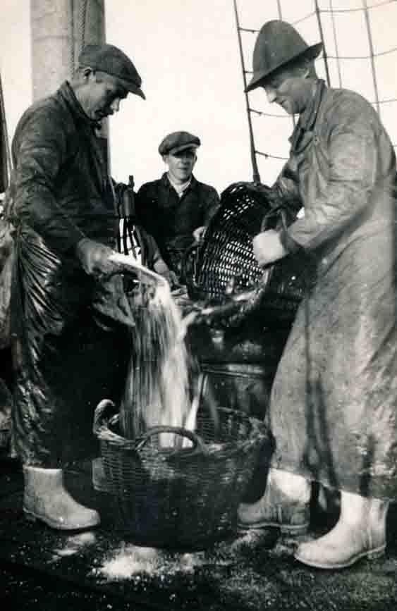 Wirtschaftliche Not trieb viele Männer aus der Region um Petershagen Mitte des 19. Jahrhunderts dazu, sich bei Reedereien an der Nordsee als Heringsfänger zu verdingen. Foto: Heimat- und Heringsfängermuseum Heimsen
